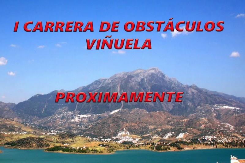 CARTEL WEB VIÑUELA